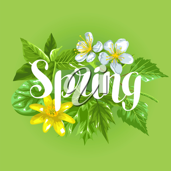 Spring green leaves and flowers. Card with plants twig buds.