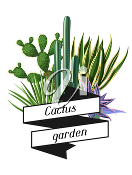 Card with cactuses and succulents set. Plants of desert.