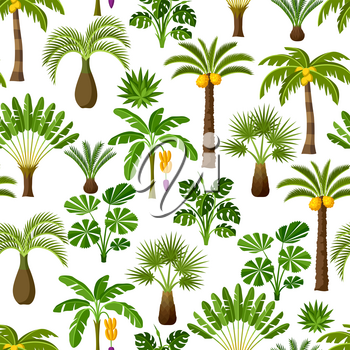 Seamless pattern with tropical palm trees. Exotic tropical plants Illustration of jungle nature.