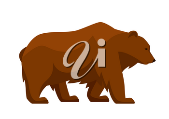 Stylized illustration of bear. Woodland forest animal on white background.