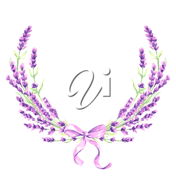 Lavender flowers decorative element. Watercolor natural illustration of Provence herbs.