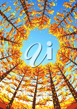 Autumn forest background with stylized trees. Seasonal illustration.