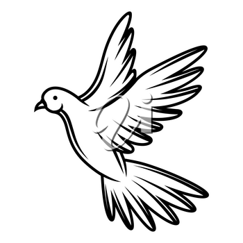 Illustration of flying dove. Black and white stylized picture. Icon for design and decoration.