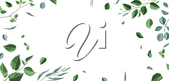 Card or background with branches and green leaves. Spring or summer stylized foliage. Seasonal illustration.
