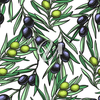 Seamless pattern with olive branch. Hand drawn vector illustration