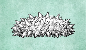 Sea cucumber ink sketch on old paper background. Hand drawn vector illustration. Retro style.