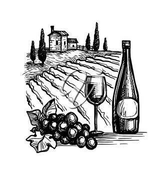 Wine bottles and glass. Bunch of grapes. Vineyard landscape. Ink sketch isolated on white background. Hand drawn vector illustration. Retro style.