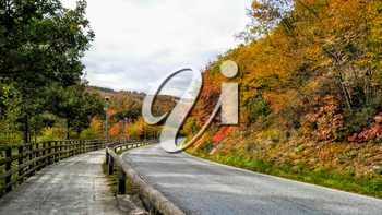 Colorful picturesque landscape. The turn of road among autumn trees. Golden autumn.