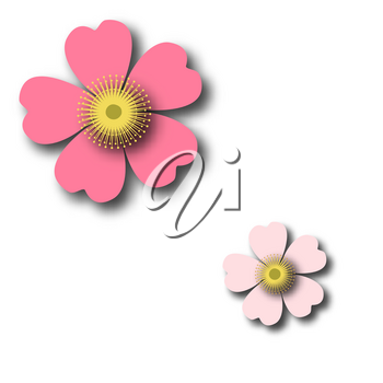 A romantic floral background. Flower. Tender Japanese daisies delicate color