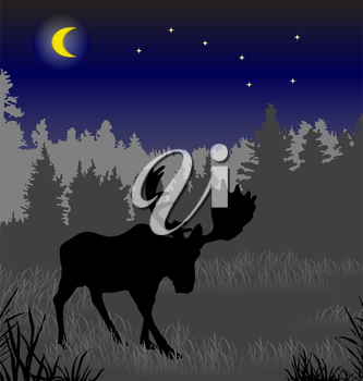 Elk in the night forest. There is a variant in a vector.