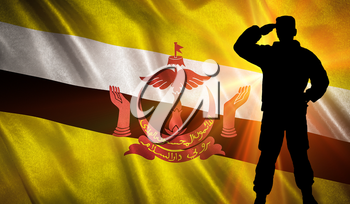 Flag with original proportions. Flag of the Brunei