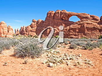 Nature National Park, Utah. The landscape and rocks. Roads and propinki Park, Utah.