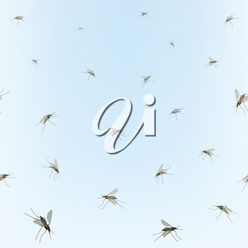 Mosquitoes on blue sky background. Incest pattern.