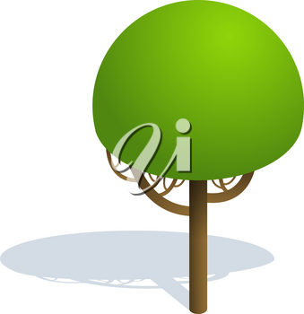 Isometric tree  on white background.  Vector illustration Isometric tree with shadow. Isometric tree vector icon illustration.