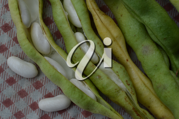 Beans. Phaseolus. Bean Seeds. Legumes. Tablecloth. Before cooking. Delicious. It is useful. Close-up. Horizontal photo