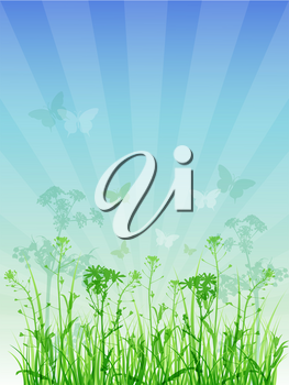 Summer vector floral background with green grass