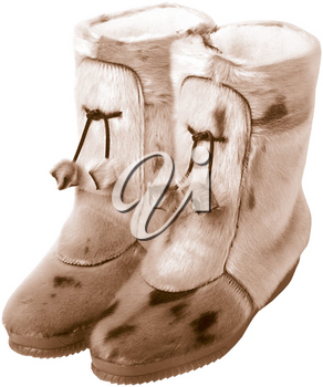 Royalty Free Photo of Mukluk Boots