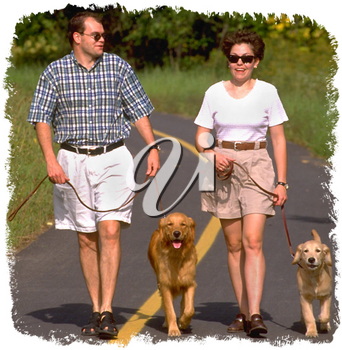 Royalty Free Photo of a Couple Walking Dogs