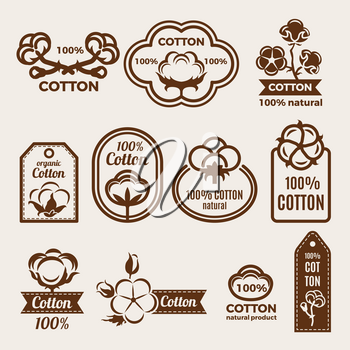Different labels set with stylized illustrations of cottons. Design template of vector badges for clothes. Cotton quality badge and logo. Bio and organic natural product