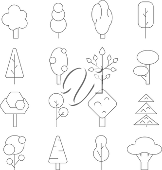 Outline trees. Vector mono line pictures of various plants. Illustration of plant tree contour