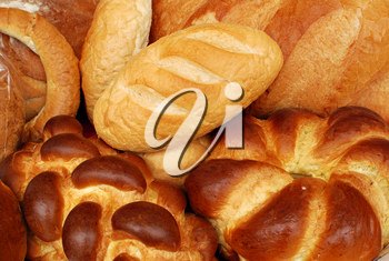 Food background with different types of bread