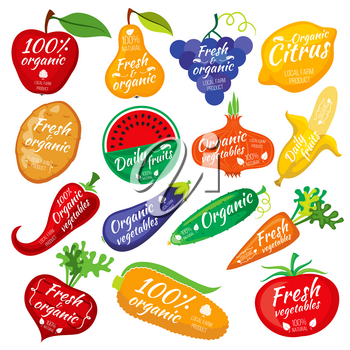 Fruit and vegetables color silhouettes, logo for food store packaging. Vegetables eggplant potatoes and cucumber, collection of label vegetables illustration