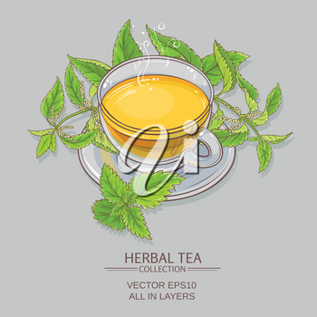 cup of nettle tea  on color background
