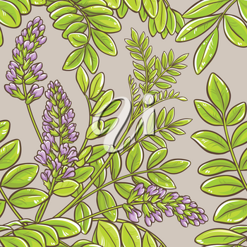 licorice plant seamless pattern on color background