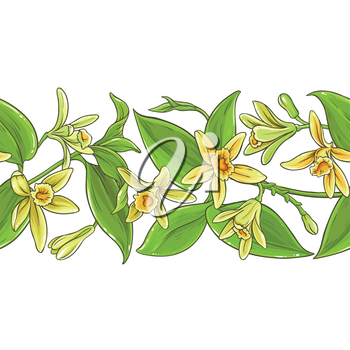 vanilla plant vector pattern on white background