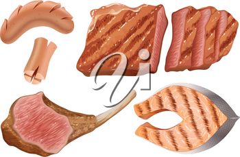 Different types of grilled meats illustration