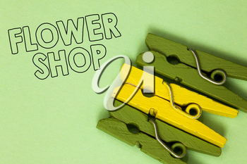Text sign showing Flower Shop. Conceptual photo where cut flowers are sold with decorations for gifts Three green yellow vintage clothespins clear background Holding things