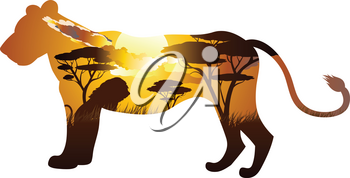 Colorful sunset scene, african landscape with silhouette of trees and lion.