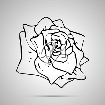 Cute outline flower, simple black icon with shadow