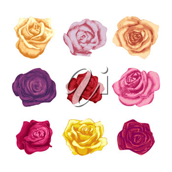 Set of beautiful bright colorful rosebuds on white