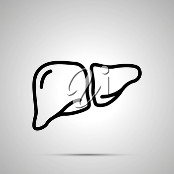Simple black human liver icon with with shadow on gray
