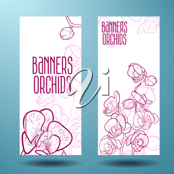 Orchids, magenta line drawn on a banner you can use to design a spa, shop flowers and other