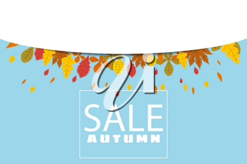 Banner for Autumn Sale, background with falling leaves, yellow, orange, brown fall lettering