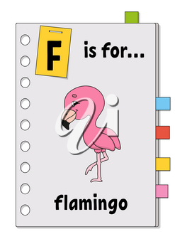 F is for flamingo. ABC game for kids. Word and letter. Learning words for study English. Cartoon character. Color vector illustration. Cute animal.